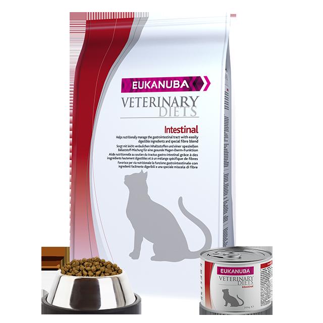 Cat Food For Sensitive Skin Uk