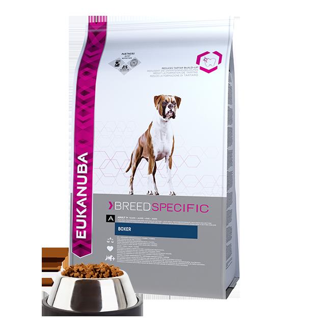 alimento secco per cane adulto boxer - pollo | eukanuba