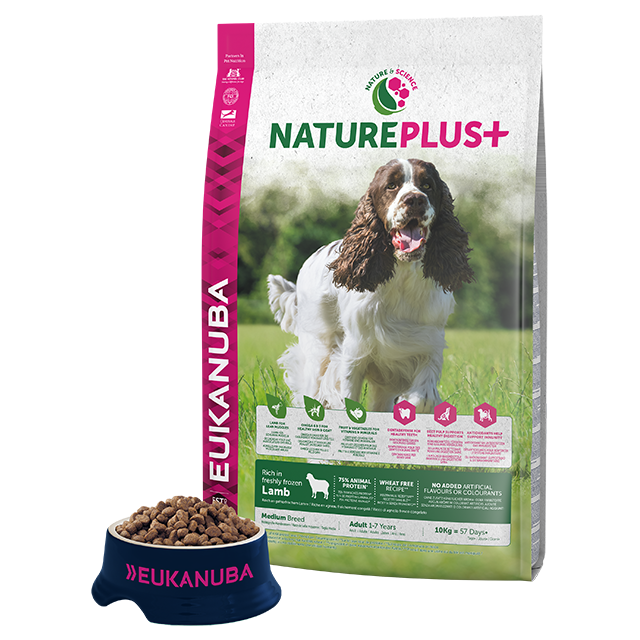 Adult Medium Breed Dog Food Lamb Eukanuba