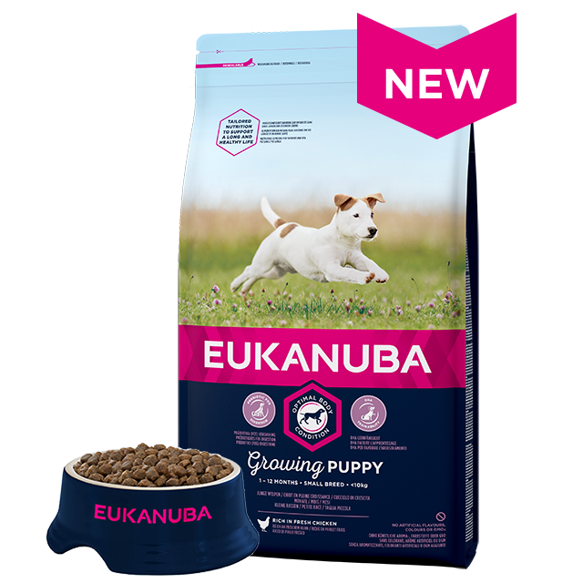 Eukanuba Puppy Food >> Small Breed Dry Puppy Food - Chicken | Eukanuba