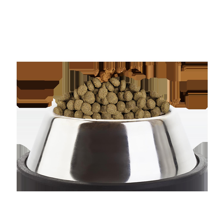Eukanuba Dermatosis Dog Food