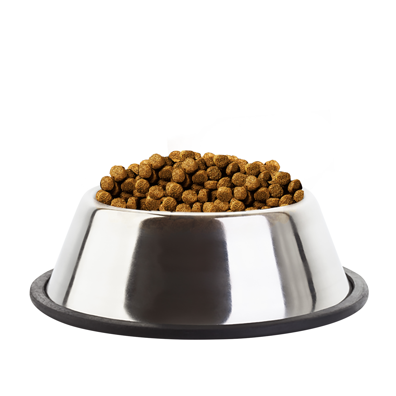 Best Dry Dog Food Uk