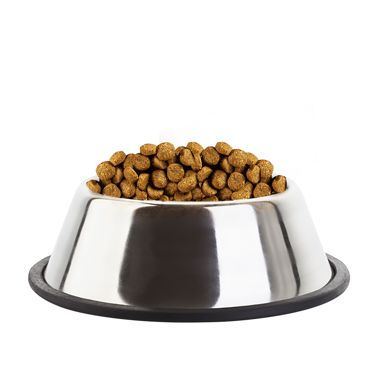 Recommended Dry Dog Food Uk