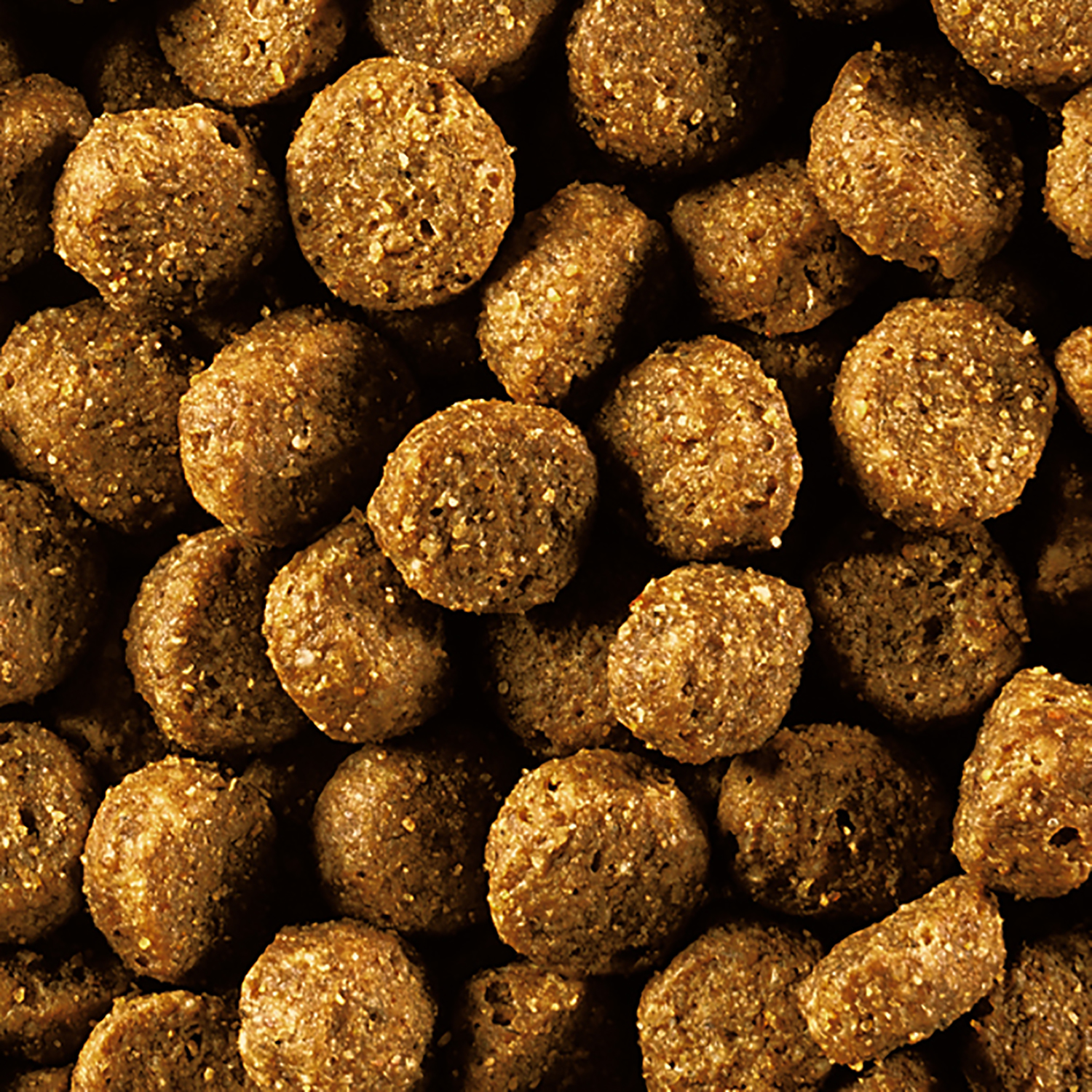 Best Small Kibble Dry Dog Food