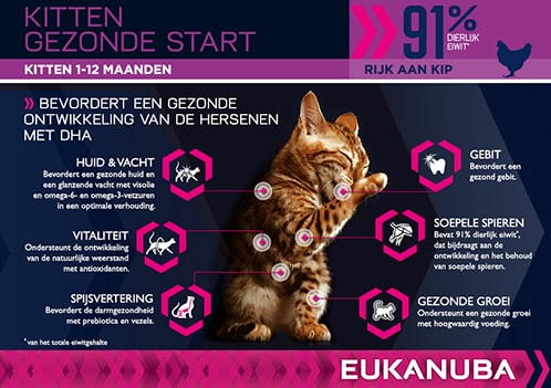 EUKANUBA Kitten Droog Kattenvoer Rijk Aan Kip Met Lever  RTP PT